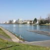 カヌーの練習を生まれて初めて見ました@戸田公園