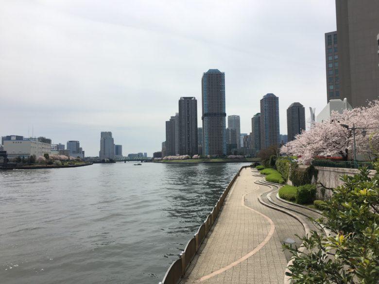 花見コース20170410-23