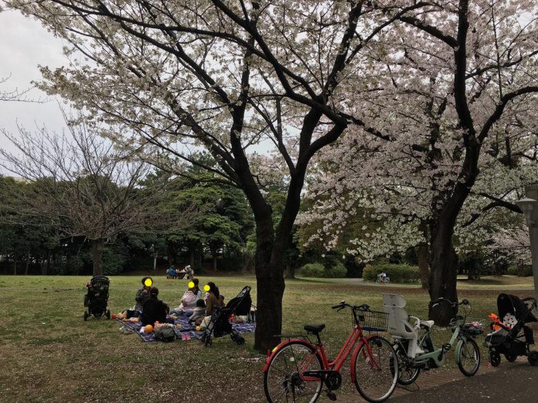 花見コース20170410-61